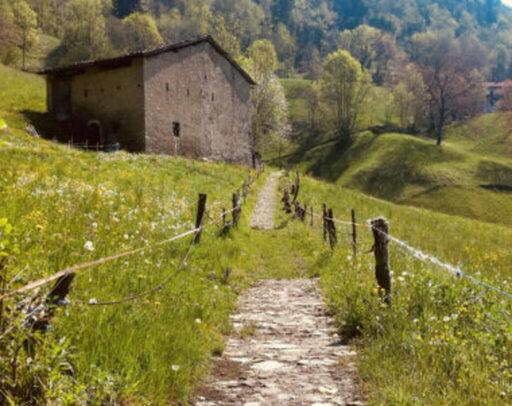 Escursione sulla Via Mercatorum